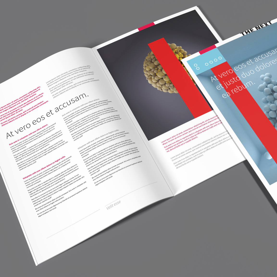 professional InDesign business brochure layout template ready to print