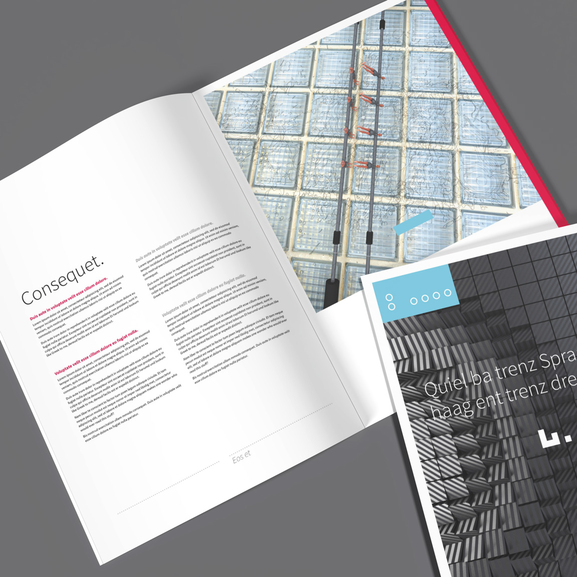 modern InDesign business brochure layout template suitable for any purpose