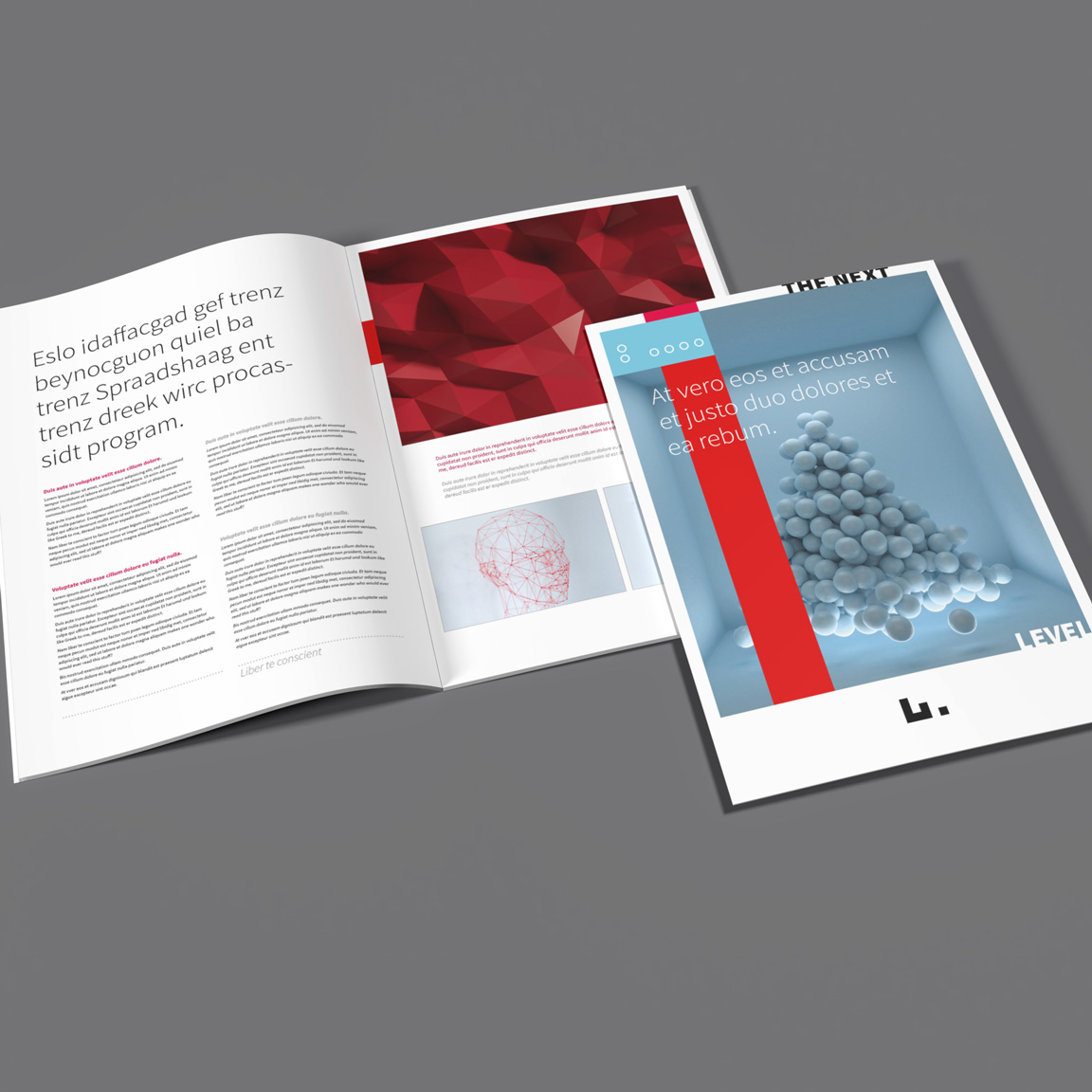 clean, neat and stylish InDesign business brochure layout, template suitable for any purpose