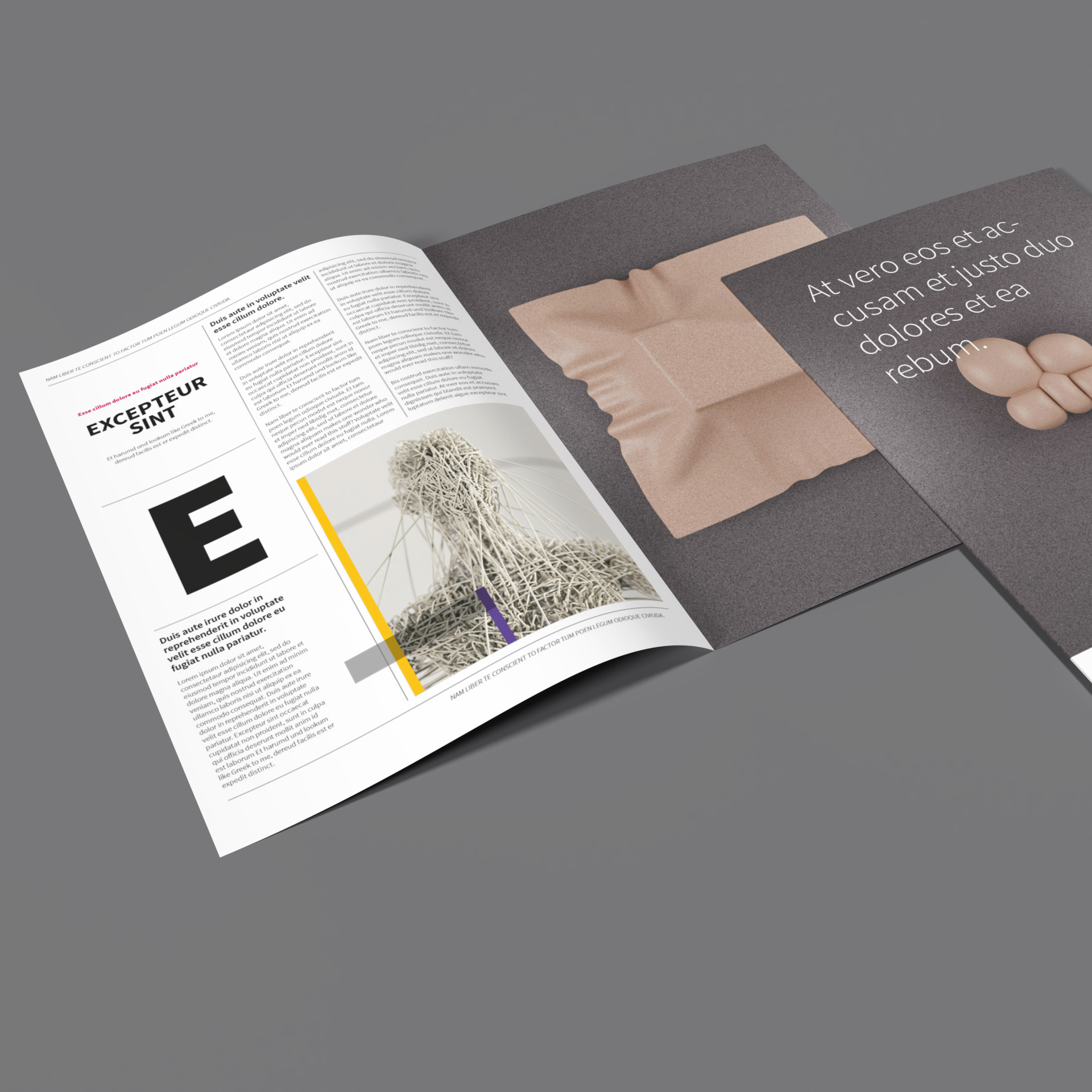 professional magazine layout, InDesign template fully editable and customizable